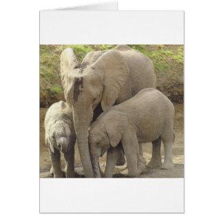 Family unit.jpg card