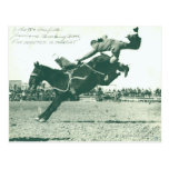 Famous Bucking Bronc Five Minutes Postcard