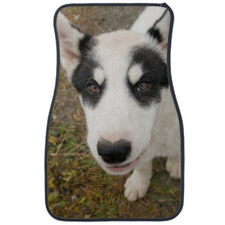 Famous Greenlandic sled dog, black and white puppy Floor Mat