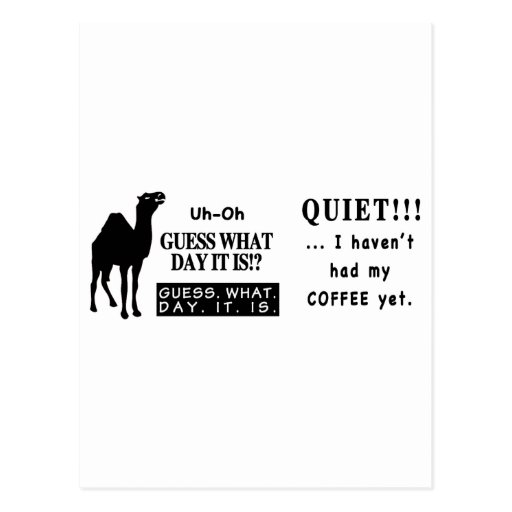 Famous Hump Day Camel Saying Quite Coffee Post Cards