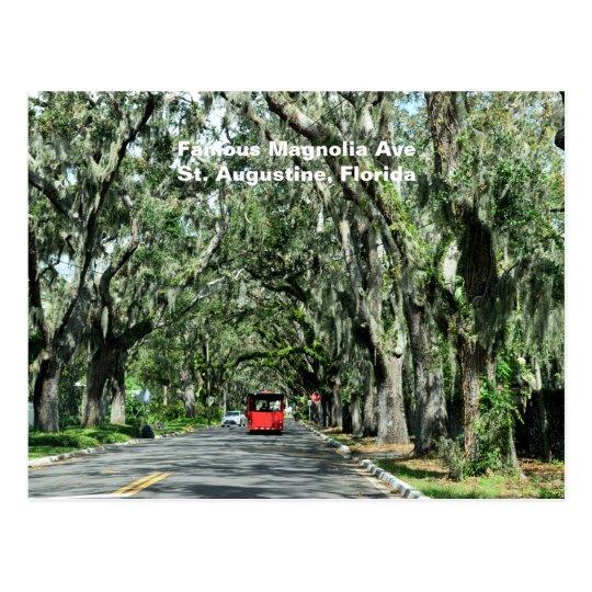 Famous Magnolia Avenue Postcard