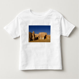 Famous movie set of Star Wars movies in Sahara T-shirts