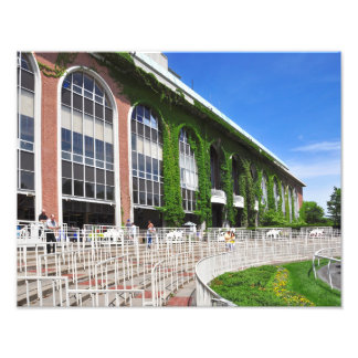 Famous Vines at Belmont Park Art Photo
