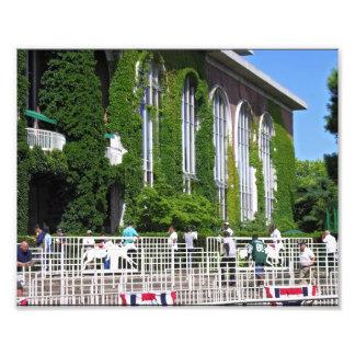 Famous Vines at Belmont Park Photographic Print