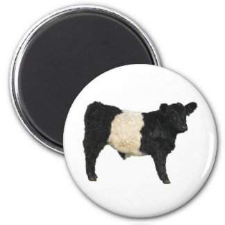 Fancy an Oreo? Belted Galloway Cow 6 Cm Round Magnet