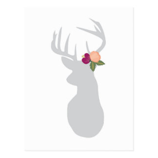 Fancy Floral Buck Postcard