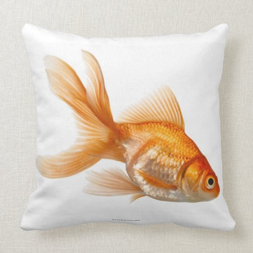 Fancy Goldfish Pillow