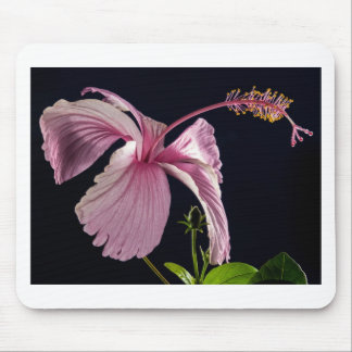 Fancy Pink Flowers Blossoms Shower Wedding Bridal Mouse Pad