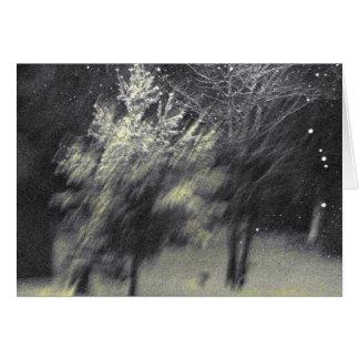 Fantacy Snow Card
