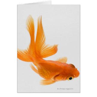 Fantail goldfish (Carassius auratus) 2 Greeting Card