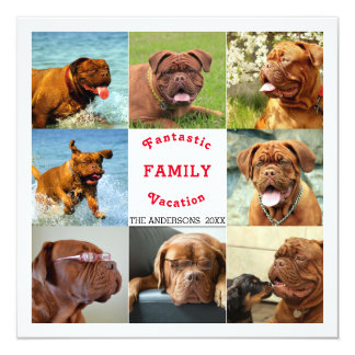 Fantastic Family Vacation Memory Photo Collage Card