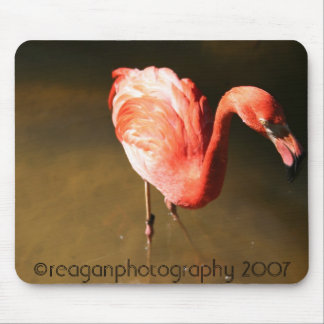fantastic flamingo mouse pads