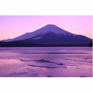 Fantastic Fuji Standing Photo Sculpture