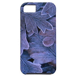 Fantastic Leafs Best iPhone 5 Case