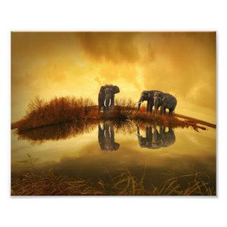 Fantasy Elephant Photo