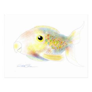 Fantasy Fish: Polly Post Cards