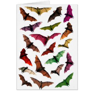 Fantasy flying fox fruit bats in sky card