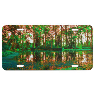 Fantasy Forest License Plate