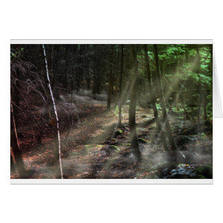 Fantasy Forest with Sunbeams Greeting Card