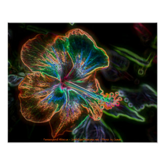 Fantasy Hibiscus Digital Art Flower Poster Print