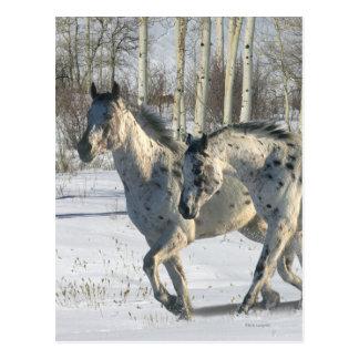 Fantasy Horses: Winter Wonderland Postcard
