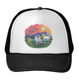 Fantasy Land (ff) - Ragdoll Cat (blue cream) Cap