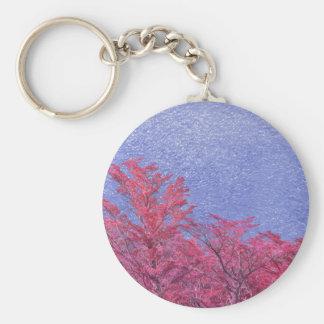 Fantasy Landscape Theme Poster Key Ring
