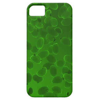 Fantasy Pebbles Case For The iPhone 5
