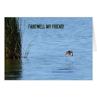 Farewell my friend greeting card