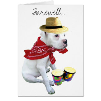 Farewell White Boxer pup with Bongos greeting card