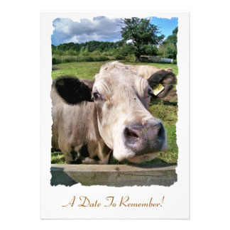 FARM ANIMALS CUTE COW CUSTOM INVITATIONS