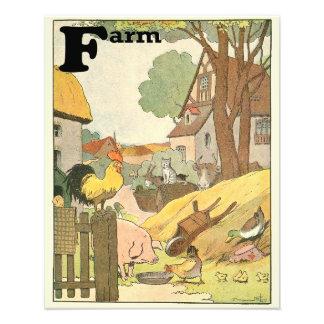 Farm Animals Illustrated Alphabet Photo