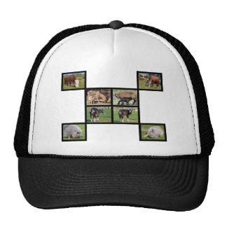 Farm animals mosaic cap