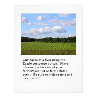 Farm field striped land farmer harvesting photo flyer