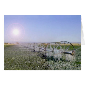 Farm Field Sympathy Card
