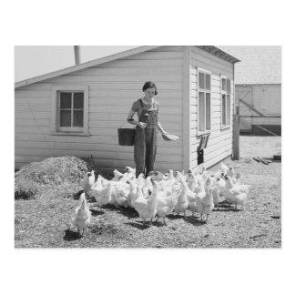 Farm Girl Feeding Chickens, 1936 Postcard