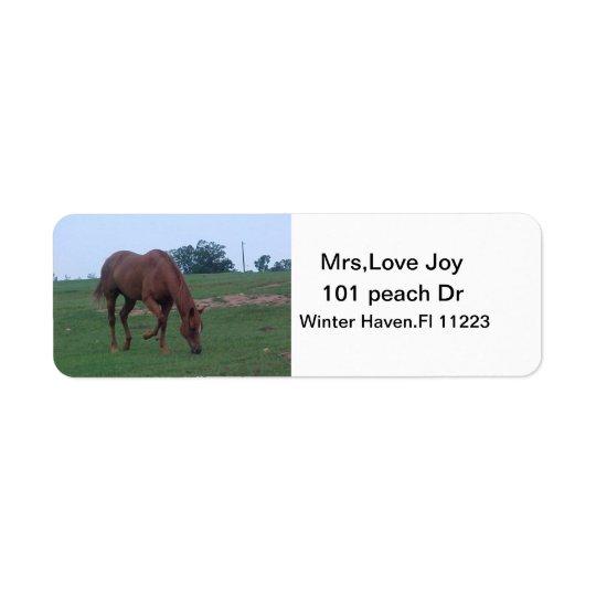 Farm Horse Address Lables Return Address Label