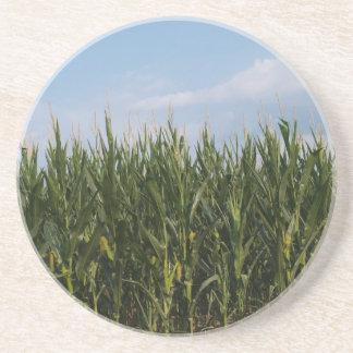Farm Series---Corn field in GA Coaster