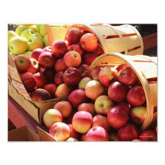 Farm stand apple photo