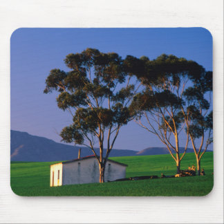 Farm Worker's Cottage And Wheat Fields, Overberg Mouse Pad