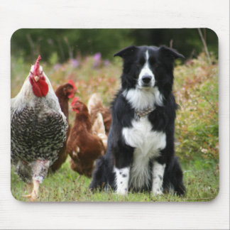 Farm Yard Family Photo Mouse Pad