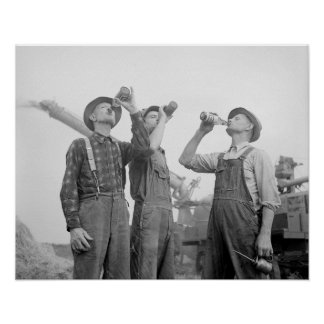 Farmers Drinking Beer, 1941. Vintage Photo Poster