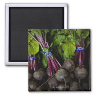 farmers market stand with various produce/ 2 square magnet