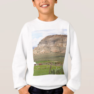 Farming country and hills, southern Utah Sweatshirt