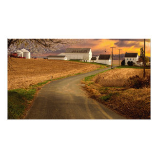 Farmland In The Spring Photo Print