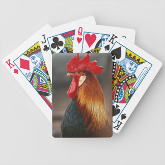 Farmyard Domestic Rooster Bicycle Playing Cards