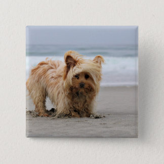 Farris - Lucy - Mixed Breed 15 Cm Square Badge