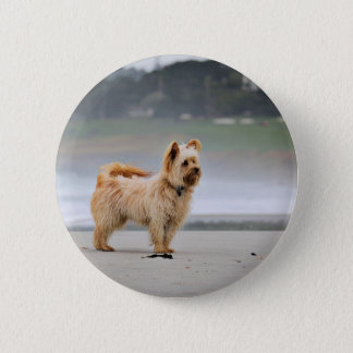 Farris - Lucy - Mixed Breed 6 Cm Round Badge