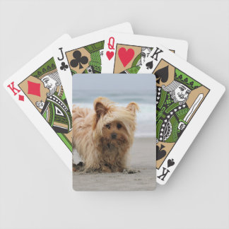 Farris - Lucy - Mixed Breed Bicycle Playing Cards