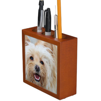Farris - Lucy - Mixed Breed Desk Organiser